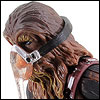 Chewbacca [Version 2] - LC - Saga Legends (SL15)