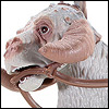 Tauntaun And Luke Skywalker - POTF2 [G/FF] - Creatures