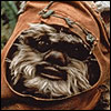 Wicket W. Warrick - ROTJ - Basic
