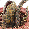 Review_BattleAtTheSarlaccPitTLC010