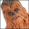 Review_ChewbaccaAndC3POTBS6P3002