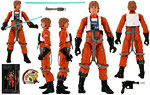 Luke Skywalke (#01) - Hasbro - The Black Series [Phase I] (2013)